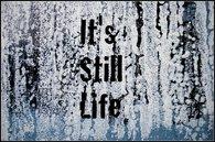 It's still life thumb